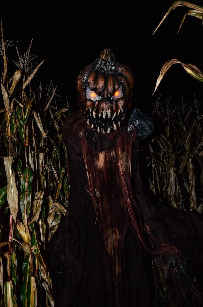 Field of Screams 2015 40